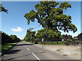 TQ5795 : Coxtie Green Road, Coxtie Green by Adrian Cable