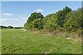 SU8468 : Former farmland near Bracknell by Alan Hunt