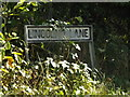 TQ5594 : Lincolns Lane sign by Adrian Cable