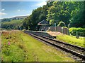 SD7920 : Irwell Vale Railway Halt by David Dixon