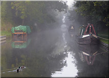 SJ8512 : Canal at Wheaton Aston, Staffordshire by Roger  Kidd