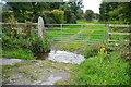 SW8666 : Ford at Polgreen Manor by John Walton