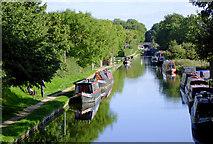 SJ8512 : Shropshire Union Canal near Wheaton Aston, Staffordshire by Roger  Kidd