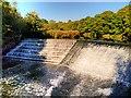 SD7913 : River Irwell, Burrs Weir by David Dixon