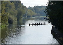 SK5803 : Rowers on the River Soar by Mat Fascione