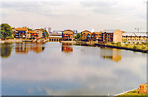 TQ3880 : London Docklands Development, 1996: West India Dock, Blackwall Basin by Ben Brooksbank