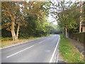 TQ3664 : Shirley Church Road by Addington Golf Club by David Howard