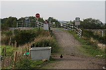 Q9403 : Farms' railway crossing by the N23, Farranfore by Chris