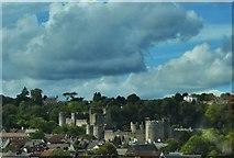 ST5394 : Chepstow Castle by Deborah Tilley