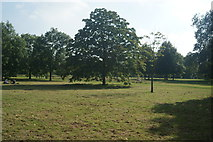TQ2780 : View of grass and trees in Hyde Park from the path next to N Carriage Drive #3 by Robert Lamb