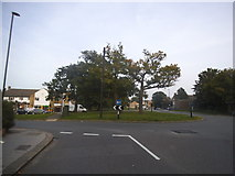 TQ3765 : Roundabout at the end of Lime Tree Grove. Spring Park by David Howard