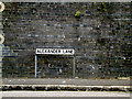 TQ6195 : Alexander Lane sign by Adrian Cable