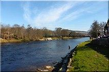 NN9357 : River Tummel by Robert Murray