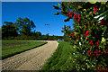 SE8559 : Approaching Gill's Farm, near Thixendale by Paul Harrop