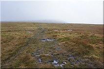 NY6834 : Pennine Way towards Cross Fell Summit by Ian S