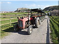 SH8081 : Massey Ferguson heading a land train by Richard Hoare