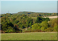 SO8179 : Pasture and woodland near Fairfield, Worcestershire by Roger  Kidd