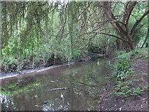 TQ2992 : Pymme's Brook in Arnos Park (4) by Mike Quinn