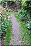 SX9050 : Worn path, Coleton Fishacre by Derek Harper