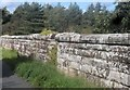 SH5868 : Rhan o draphont rheilffordd y Penrhyn dros Afon Cegin / Part of the Penrhyn railway viaduct over Afon Cegin by Ceri Thomas