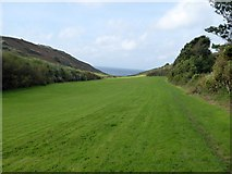 SW6719 : Valley above Polurrian Cove, Mullion by David Smith