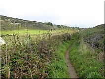 SW6718 : Path inland from Polurrian Cove by David Smith