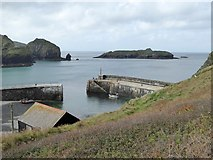 SW6617 : The harbour at Mullion Cove by David Smith
