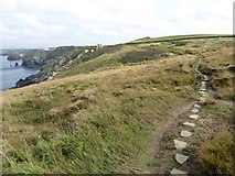 SW6616 : Stepping stones on Higher Predannack Cliff by David Smith