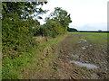 TF9221 : Farmland west of Stanfield, Norfolk by Richard Humphrey