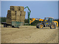 TA0518 : Loading Bales by David Wright