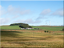 NY9179 : Moorland on east side of A68 near to Cowden by Trevor Littlewood