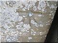 NY9393 : Ordnance Survey 1GL Bolt by Adrian Dust