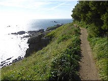 SW7011 : South West Coast Path above Polbream Cove by David Smith