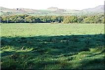 SH3233 : Cae ger Wern Fawr - Field near Wern Fawr by Alan Fryer