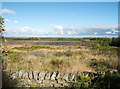 NZ0056 : Clear-felled area of Low Kellas Plantation by Trevor Littlewood
