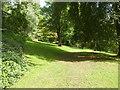 SS9615 : A woodland garden path at Knightshayes Court, near Tiverton by Derek Voller