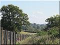 SJ6451 : Green Lane towards the railway line by Stephen Craven
