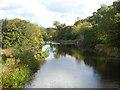 NT8855 : River Whitadder by Oliver Dixon