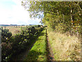 NT8858 : Green lane from Blackburn to Harelaw by Oliver Dixon