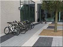 TQ2081 : Woodward Hall, Imperial College, entrance and bike rack by David Hawgood