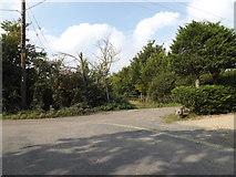 TM0615 : East Road, East Mersea by Geographer