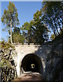 NH3302 : Old railway tunnel, by Loch Oich by Craig Wallace