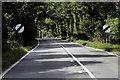 TL8571 : A134 north of Ingham by David Dixon
