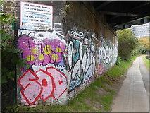 TQ2182 : Graffiti on the abutment of Bridge BOK 4/1 by Rod Allday