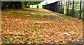 J4173 : Autumn leaves, Dundonald - October 2015(2) by Albert Bridge