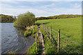 SD3893 : Windermere shoreline by Ian Capper