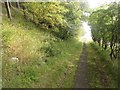 NU0048 : Footpath beside the A1 by Graham Robson