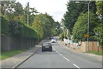 TQ5130 : B2100, Crowborough Hill by N Chadwick