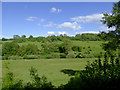 SO7582 : Farmland south-east of Highley, Shropshire by Roger  Kidd
