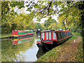 SP9114 : Autumn on the Marsworth Basin of the Grand Union Canal by Chris Reynolds